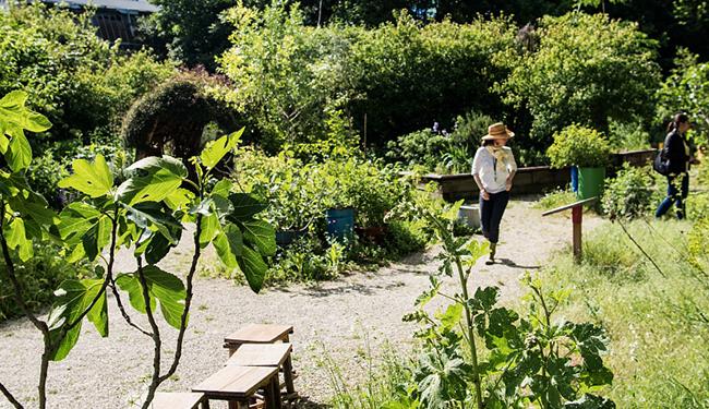 les jardins de la Villette